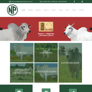 Site em Jundiaí - SP