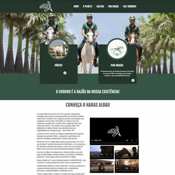 Sites Com Designer Responsivo Vinhedo - SP